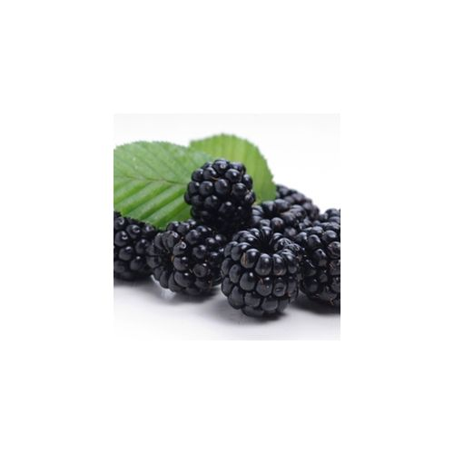 Perfumer's Blackberry 15ml Aroma