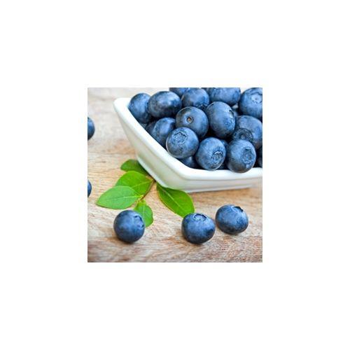 Perfumer's Blueberry (Wild) 15ml Aroma
