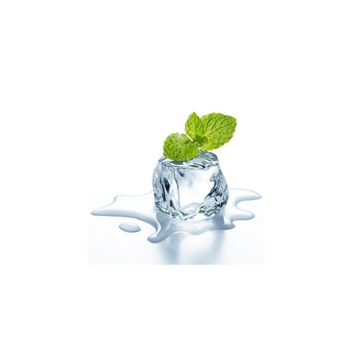 Perfumer's Wintergreen 15ml Aroma